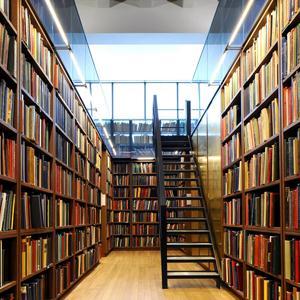 Библиотеки Лодейного Поля